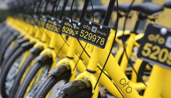 小程序丨支付宝扫一扫就能解锁这6家共享单车了,并附有保险理赔