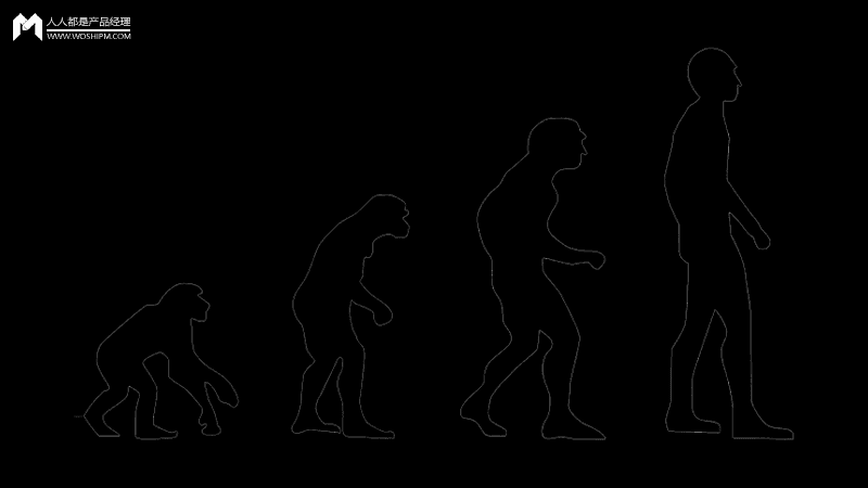 """产品进化论:""""基因组""""计划"""