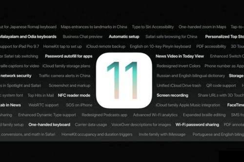 iOS11降级操作分享(全)!来自一个好奇的猫。
