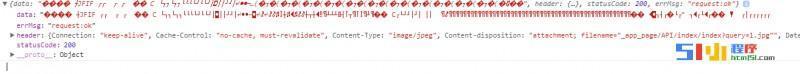 小程序丨获取小程序二维码获取成功,data为什么显示这个?【已解决】 ... ...