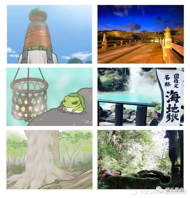 【增长】薛定谔的蛙儿子:每一次旅行,都是一次坍塌