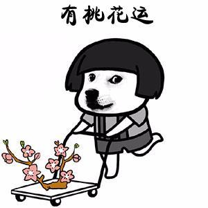 """在玩吧APP过大年,2019""""猪""""事皆宜桃花旺旺旺!"""