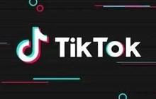 TikTok被印度封禁两天,哪款产品通过ASO吃到最大红利?