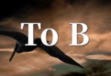 To B生意的私域流量,你应该知道的10件事儿