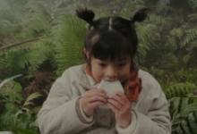 苹果发布春节贺岁片:你在怕什么呢?