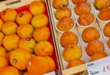 潮州商业见闻杂谈:社区团购不是在所有地方都是好生意